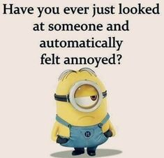 87 Funny Minion Quotes Of The Week And Funny Sayings 64