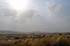 Near Taparash in Sulaymani, Kurdistan