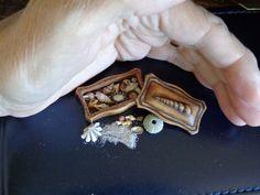 Shell box, shells & urchin. https://www.etsy.com/shop/LynnJowers