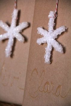 borax-crystal-diy-craft-Christmas