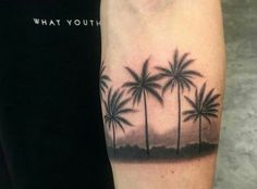 Palm trees  by bang bang nyc