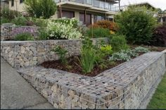Home Decorating Style 2020 for Inspirational Terraced Garden Ideas Australia, you can see Inspirational Terraced Garden Ideas Australia and more pictures for Home Interior Designing 2020 1655 at AtHouse. Gabion Retaining Wall, Landscaping Retaining Walls, Back Gardens, Small Gardens, Outdoor Gardens, Home Entrance Decor, Garden Entrance, Country Landscaping, Outdoor Landscaping