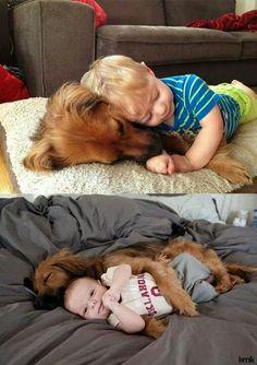 #Köpekler #Bebekler ve #Huzur