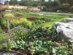 Penpont, Powys, Wales. We sell all our organic produce within seven miles of the estate. The produce is also sold through our farm shop in the old dairy http://www.organicholidays.com/at/1560.htm