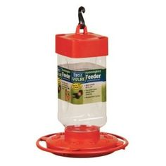 This is a guide about keeping bees out of he hummingbird feeder. Bees and hummingbirds are often found in the same places in your garden. However, if you are putting out food for the hummingbirds it can attract an unwanted amount of bees. Bee Problem, Drone Bee, Drill Bit Sizes, Mint Oil, Bee Boxes, Bees And Wasps, Food Photography Tips, Humming Bird Feeders, Bees Knees