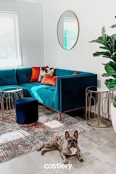 Bold colours, luxe velvet, and plush finishes take the Jeanne Sofa to the next level. Castlery—Accessible Designs for the Modern Home Window Treatments Living Room, Living Room Windows, Cozy Living Rooms, Living Room Chairs, Apartment Living, Living Room Decor, Living Room Green, Living Room Storage, Reno