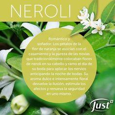 Aromatherapy Oils, Spas, Healthy Tips, Essential Oils, Gardens, Aromatherapy, Menstrual Cycle, Alternative Medicine, Essential Oil Uses