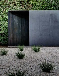 Andrew Burns has installed a charred timber pavilion with deceptively curved walls in a garden