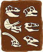 Crânios de dinossauros