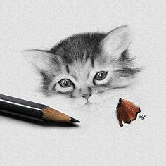 Lovely kitty by @rob_matteazzi !! . Follow us @mizu_arts_help...