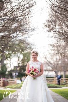 regal bridal portraits spring dallas arboretum crepe myrtle alley