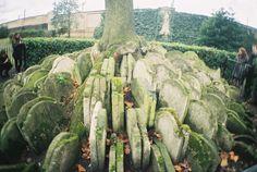 relocated headstones
