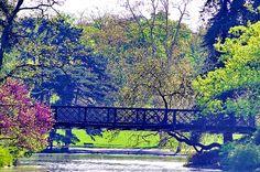 Paris, dans le Bois de Vincennes 55