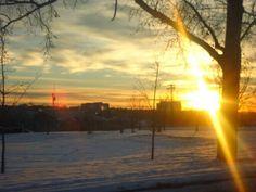 Winter morning sunshine