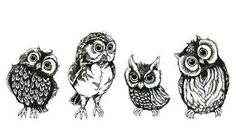Owls for Bethany Mota!!