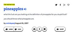 PINEAPPLES - 19 Times Urban Dictionary Was Too Real