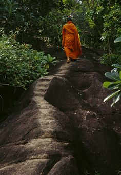 Buddhist monk on ancient footpath to monastery ... Maligatenna, Sri Lanka