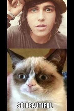 Not even grumpy cat can have a grumpy face at the sight of this beauty. c: