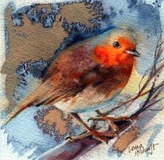 LORNA KIRIN  Robin Red Breast - Watercolour and ink on Saunders Waterford