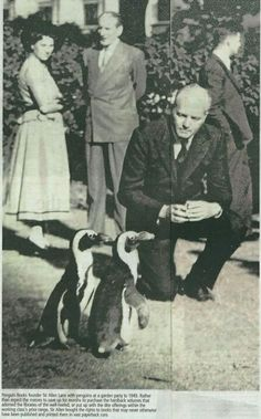 Sir Allen Lane, founder of Penguin Books, with penguins at a garden party in 1949.