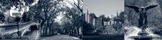 New York City Central Park Discovery Tour