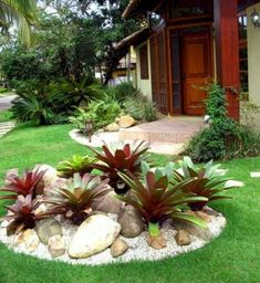 Tropical Landscaping, Landscaping With Rocks, Front Yard Landscaping, Landscaping Ideas, Mulch Landscaping, Landscape Design, Garden Design, Front Yard Design, Gras