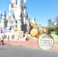 alexandani:A dream is a wish your heart makes…