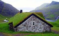 Image result for turf roof