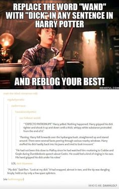 "Replacing ""Wand"" With ""Dick"" in Sentences in Harry Potter"