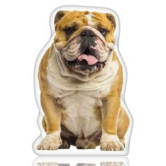 The iLeesh English Bulldog Shaped Pillow makes for a fun and lively piece in any home. This pillow is a great gift not just for pet owners but for kids and pet lovers. It is shaped to the featured bre