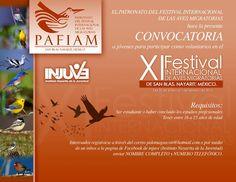 Evento de #DíaInternacionaldelasAvesMigratorias en San Blas, Nayarit, México.  #InternationalMigratoryBirdDay event in San Blas, Nayarit, Mexico. #BirdDay