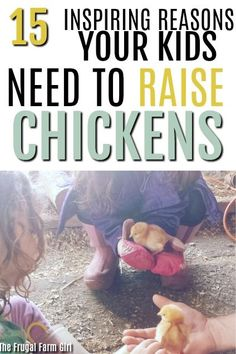 I wasn't quite sure if raising chicks would be the right choice for my family. What was all the work involved? I can see after checking out these tips raising chicks is a must try this year for our family. Types Of Chickens, Raising Backyard Chickens, Backyard Poultry, Pet Chickens, Backyard Farming, Chicken Feed, Chicken Runs, Coops, Farm Life