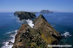Channel+Islands+National+Park+California | Channel Islands National Park / チャンネルアイランド ...
