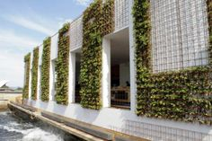Living wall - great idea for outdoor structures