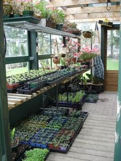 great little green house- love that she starts plants for her garden and has enough overage to sell for extra profit