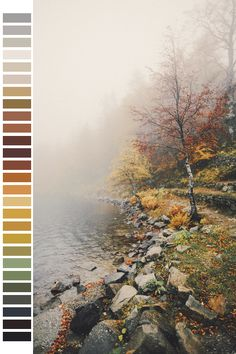 red landscape orange green pink colors nature yellow  gray transparent vertical color palette dark green