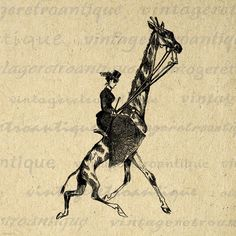 Lady Riding Giraffe Printable Digital Image Antique Illustration Download Graphic Vintage Clip Art. High resolution digital image graphic. This vintage printable digital illustration works well for fabric transfers, printing, tote bags, and other great uses. Personal or commercial use. This digital graphic is high quality at 8½ x 11 inches large. Transparent background PNG version included.