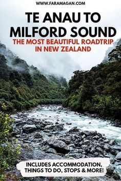 Te Anau to Milford Sound – the most popular road trip in New Zealand and this post shares why. Includes accommodation, best photo stops, camping tips, Milford Sound cruise & more! New Zealand Itinerary, New Zealand Travel Guide, Te Anau New Zealand, Travel Guides, Travel Tips, Travel Icon, Places To Travel, Travel Destinations, Holiday Destinations