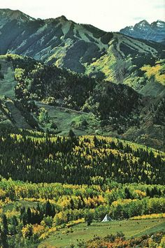 Ski trails score the high slopes near Aspen, Colorado National Geographic | October 1979