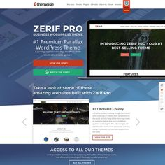 Create a sales page for one of the most popular WordPress Themes ( Zerif PRO ) by alexbombaster