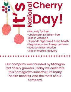 Cherry Tart, Dried Cherries, Muscle Recovery, Natural Sleep, Reduce Inflammation, Heart Health, Cholesterol, Health Benefits, Vitamins