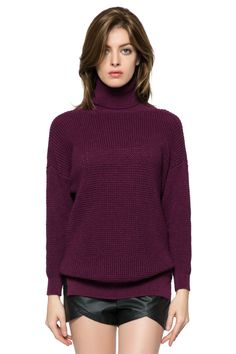 Solid Color Turtle Neck Sweater