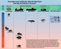 Ocean acidification to hit West Coast Dungeness crab fishery