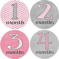 Rocket Bug Girly Grey Monthly Baby Bodysuit Stickers