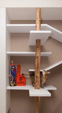 vertical small spaces and modern shelving ideas for cats by thinking design