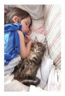 Cat Therapy Transforms Autistic Child's Life