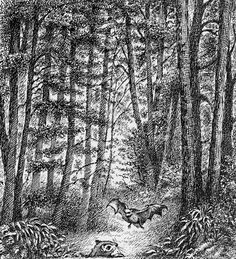 """""""The Bat-Poet"""" by Randall Jarrell, illustrated by Maurice Sendak The Tiny Seed, Children's Book Illustration, Book Illustrations, Maurice Sendak, Book Writer, Sacred Art, Typography Prints, Childrens Books, Illustrators"""