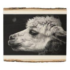 Alpaca side-view portrait wood panel - portrait gifts cyo diy personalize custom