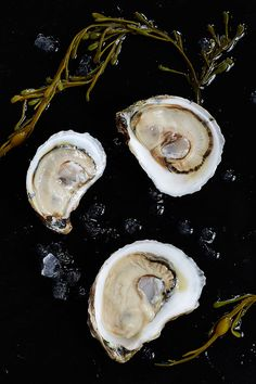 """The Ordinary is a Southern seafood hall and oyster bar located in an old bank in Charleston, South Carolina. Its menu celebrates the """"merroir"""" of the Coastal Carolinas and the East Coast."""
