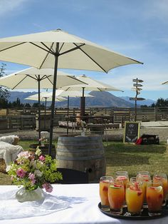 Browse a collection of images showing some of the possibilities Criffel Station Woolshed offers you for your Wanaka wedding or event. Start planning today.